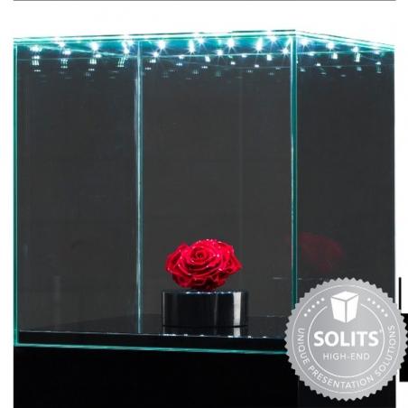 Urna-vitrina de vidrio con puerta y vidrio-led 30 x 30 x 30 cm